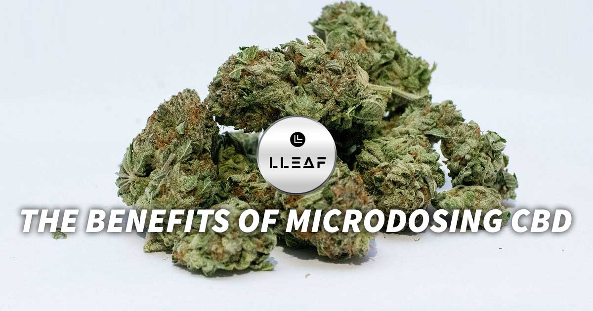 The Benefits of Microdosing CBD, www.shoplleaf.com