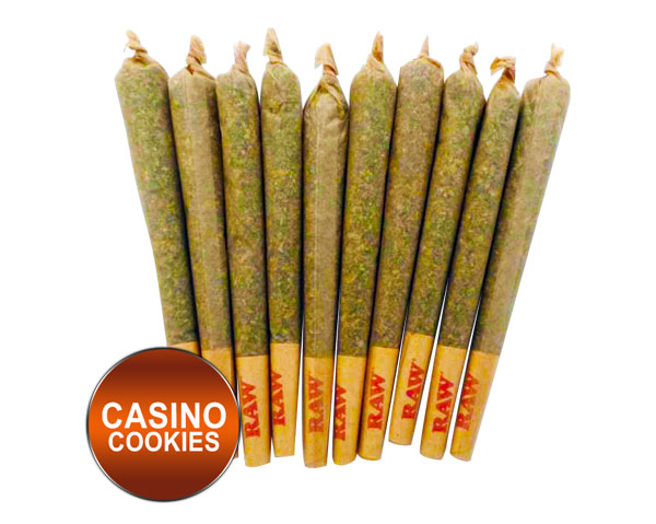 Casino Cookies. 21.8% CBD. Pre-Roll - $9.99. Tennessee local CBD