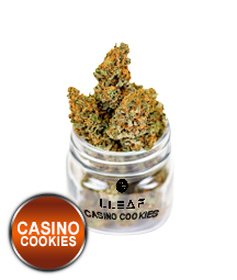 . Casino Cookies. CBD Flower. Buy quality cbd online, shoplleaf.com