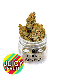 flower. Juicy Fruit. CBD Flower 16.4% CBD. Buy quality cbd online, shoplleaf.com