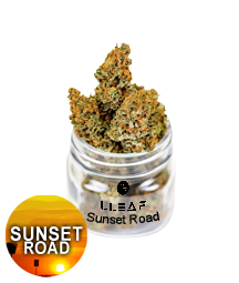 flower. Sunset Road. CBD Flower 19.5% CBD. Buy quality cbd online, shoplleaf.com